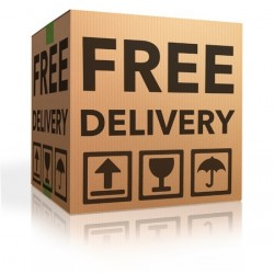 19870335 - free delivery package from shipping online internet webshop cardboard box as webshop shopping icon parcel with text order shipment