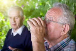 38652676 - two senior men siting in garden, chatting and drinking water