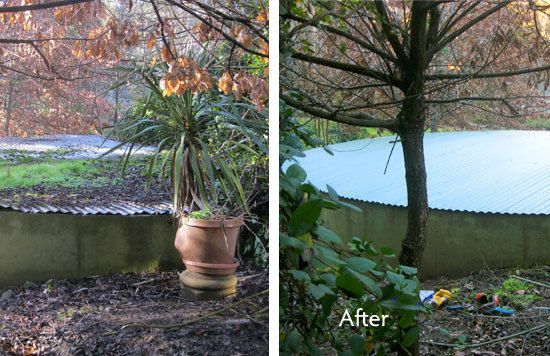 tank-roofing-before-and-after-4