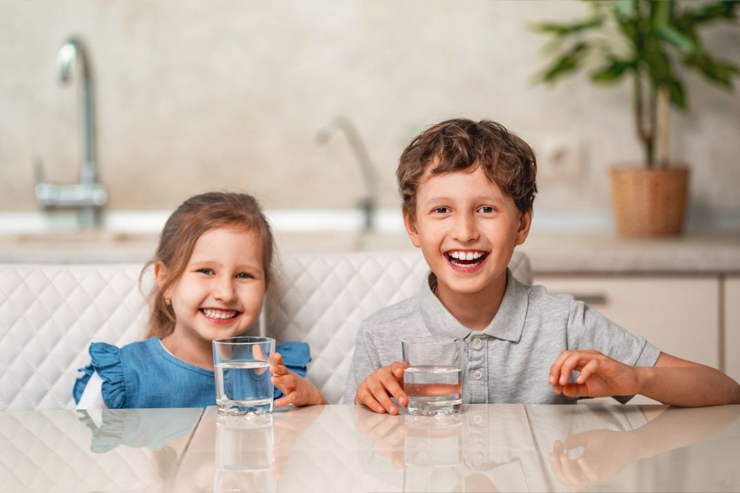 Rainwater Filtration Systems